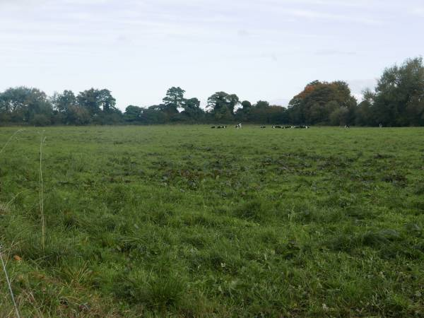 Approx. 10 Acres of Agricultural Land