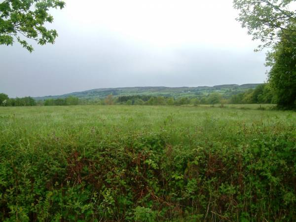 23.5 Acres of Land