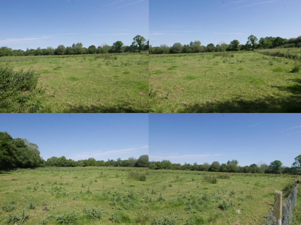 Approx. 12.5 Acres of Agricultural Land
