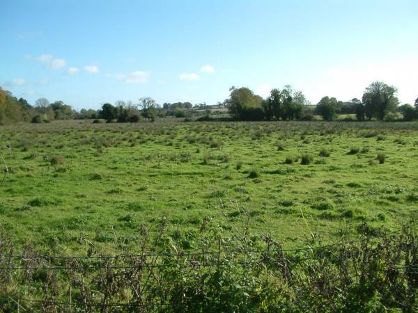 11.1 Acres of Land
