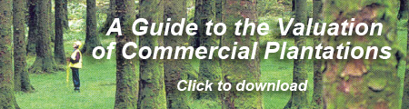 Commercial Plantation Guide